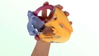 RIZE RIZIUM Glass Fiber hand-holding-heart 08-11-2020 copy